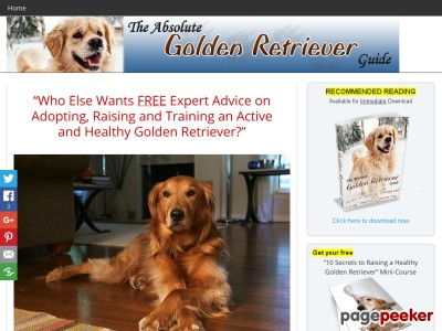 Get Your Copy Of The Absolute Golden Retriever Guide Today